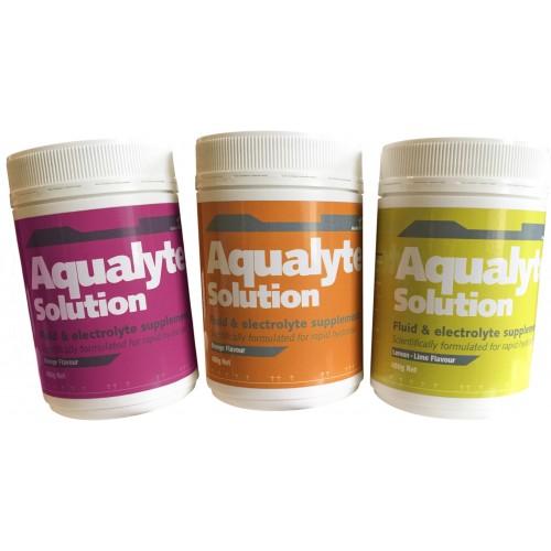 Aqualyte 480gm Tub Sachet Electrolyte Solution - 5 Pack